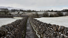 Path through the snow (42jph) Tags: snow march spring uk england yorkshire wharfedale nikon d7200 nature countryside landscape drystone wall stone path