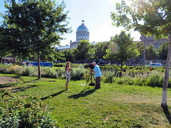 Television reporter, Montreal, Quebec (duaneschermerhorn) Tags: television tv reporter live cameraman video camera woman man broadcast green park grass trees building dome church cathedral