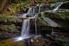 Leura, Blue Mountains (darrinwalden Photography) Tags: leura blue mountains waterfall water flow rocks green wet moss color colour slippery damp ferns tranquil australia