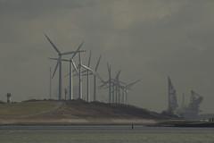 De Landtong - Rozenburg (Jan de Neijs Photography) Tags: landtong delandtong rozenburg nederland holland zuidholland southholland dieniederlande rotterdam molen windmolen thialf heerema heeremamarinecontractors tamron150600g2 g2 150600 tamron150600 tamron windturbine landschap landscape landshaft