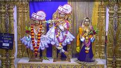 Radha Krishna Dev Sandhya Darshan on Mon 23 Apr 2018 (bhujmandir) Tags: radha krishna dev lord maharaj swaminarayan hari bhagvan bhagwan bhuj mandir temple daily darshan swami narayan sandhya