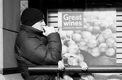 Red or white, that is the question... (markwilkins64) Tags: candid bw blackandwhite monochrome mono streetphotography street canon serious funny humour sign wine dog housesofparliament london