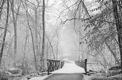 Footbridge in the Snow (Joe_R) Tags: bw winter film columbia maryland unitedstates us filmdev:recipe=11861 kodakhc110 developer:brand=kodak developer:name=kodakhc110 bridge snow cold iso400
