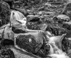 NB-12.jpg (neil.bulman) Tags: countryside longshawestate longexposure peakdistrict nature nationalpark derbyshire longshaw flowingwater rocky water flowing rocks derbyshiredalesdistrict england unitedkingdom gb