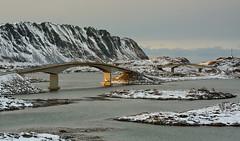 Bridges (Dalis.V) Tags: lapland norway lofoten bridges winter see