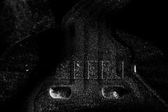 Circuts 2 (Josh152) Tags: bw blackandwhite sb800 d800 flash macro nikond800 nikon 50mmf18gse speedlight