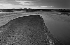 Southcoast of Iceland with Vestmannaeyjar Isalnds, Iceland (klauslang99) Tags: klauslang nature naturalworld iceland landscape bw black white sand water