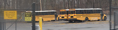 Mid-City Transit Corp. #276,  #263, #265 (ThoseGuys119) Tags: midcitytransitcorp middletownny schoolbus icce thomasbuilt freightliner saftliner c2 fs65 tintedwindows