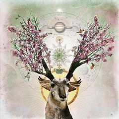 Vernal Theatre (Vincent Mattina (aka FLUX)) Tags: spring art bloom pronghorn deer sun light resurection saturn birth season cycle wings digital