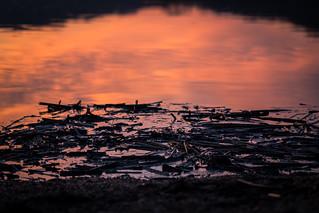 Indian Lake Sunrise