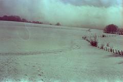 film (La fille renne) Tags: film analog 35mm lafillerenne canonae1program 50mmf18 kodak kodakso554 expiredfilm expired winter mountain hike hiking snow