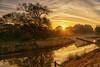 Sonnenaufgang an der Regnitz (Claudia Brockmann) Tags: natur nature landscape landschaft regnitz sunset fluss river sonnenaufgang sonnenlicht sonnenstrahlen spiegelung reflections reflection baum tree himmel sky wasser wolken cloud clouds water