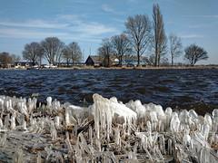 Amstel (Kronemans) Tags: amstel amsterdam ijs winter