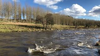 Riverview Park - Dyce Aberdeen Scotland - 24/3/2018