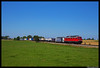 DB Cargo 232 209, Kirchweidach 05-08-2017 (Henk Zwoferink) Tags: kirchweidach bayern duitsland de dorfen henk zwoferink lomo lm lokomotion rail traction company rtc 232 br232 209 siemens vectron 193 772 db cargo deutsche bahn dbc grass sky train locomotive field tree railroad