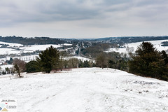 WestWHill_DSC8713 (Nick Woods Photography) Tags: snow snowscene snowscape snowcovered landscape trees white whitecovering winter winterscene cold ice hill westwycombehill wycombehill greysky buckinghamshire bucks