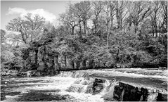 The River Swale . (wayman2011) Tags: fujifilm23mmf2 lightroomfujifilmxpro1 wayman2011 bwlandscapes mono rivers river swale waterfalls trees rural pennines dales swaledale northyorkshire richmond uk