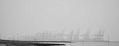 Fata Morgana (Froschkönig Photos) Tags: fata morgana fatamorgana bremerhaven hafen überseehafen krähne sw bw nordsee weser 6000 a6k a6000 ilce6000 sonyalpha6000 selp18105g 2018 wremen grau grey 50shadesofgrey nebel fog dunst