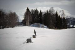 Holga week 14 (KvikneFoto) Tags: holga nikon landskap vinter winter snø snow natur norge hedmark kvikne