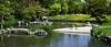 Pond in Nakajima-koen, Sapporo 中島公園  札幌 (Anaguma) Tags: japan hokkaido sapporo park greenspace