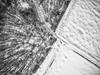 Inside to Outside (M-Z-Photo) Tags: colmberg bayern deutschland de luftbild winter wald schnee felder feldweg natur landschaft bäume