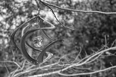 Copper Wind Spinner-HMBT! (Jo Zimny says: Where Is Spring????) Tags: monochromebokehthursday windspinner copper monochrome hanging redmaple inthebackyard