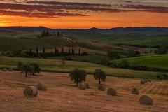 The Agriturismo @ San Quirico d'Orcia, Italy (Avisekh) Tags: italy tuscany sunrise nature landscape golden light sky field sanquirico nikon d810 2470 lee leefilters tripod wwwavisekhphotographycom