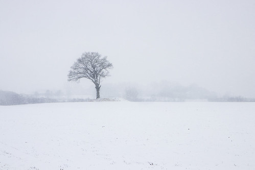 """Winter in Skåne • <a style=""""font-size:0.8em;"""" href=""""http://www.flickr.com/photos/150102734@N08/27164078518/"""" target=""""_blank"""">View on Flickr</a>"""