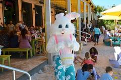 LuLu's-Easter Egg Dash 2018-2
