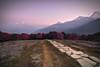 Way to sunrise (PoetheusFotos) Tags: way path trekkin annapurna machapuchre dhaulagiri circuit nepal himalaya landscape nature sunrise morning evening sun sky rhododendron flowers flourish red snow gras grass frost dawn dusk tree