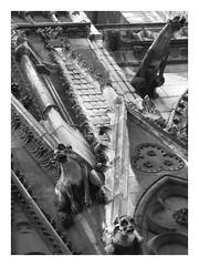Notre Dame. Paris. IMG_3426_PS (Inclitus) Tags: notredame blancoynegro arquitectura iglesia