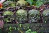 Trunyan Village Graveyard, Bali 15 (Petter Thorden) Tags: bali indonesia kintamani lake gunung batur trunyan
