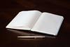 20180318-DSC_6539a (adamhiram) Tags: alphabet ink notebook pen