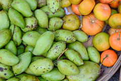 Mango fruits for sale at the local market (phuong.sg@gmail.com) Tags: agriculture asia branch bunch citrus closeup color delta diet eat food fresh fruit green hang healthy indochina juice juicy leaf mango mangoes mekong natural nature nutrition object organic outdoor plant raw refreshment season single south summer sweet tangerine tree tropical vegetarian vietnam vitamin yellow
