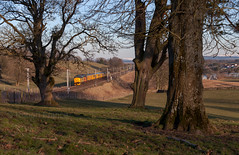 Tree line (Robert France) Tags: 12csvt 37 37421 boulogne britain brush traction cables catenary class cleghorn colas railfreight diesel ee electric power railway england english freight haulage hauling infrastructure monitoring lanark loco locomotive locomotives locos network rail overhead line plain pattern recognition train plpr railroad railways scotland test trains transport uk united kingdom wcml west coast main creative progressive artistic railwayphotography railwayphotograph railwayphotographs phoenixrailwayphotographiccircle prpc phoenixrpc image images art photograph photographs photography