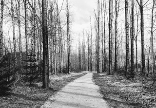 TransCanada Trail 24th March