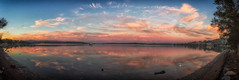 Lake views (LivingStone Images) Tags: 02apr18 2018 365the2018edition 3652018 colourefexpro day92365 huntervalley lakemacquarie nikcollection places reflection sunrise warnersbay water