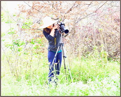 PhotoGirl (tdlucas5000) Tags: bright demi photographer sunny flowers field d850