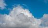 DSC00143 (johnjmurphyiii) Tags: 06416 clouds connecticut cromwell originalarw shelly sky sonyrx100m5 spring usa yard johnjmurphyiii