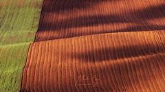 sardice (Martin Sukup photography) Tags: moravské toskánsko šardice karlov moravia landcape panorama