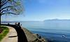 Aquarelle sur le lac (Diegojack) Tags: sonyrx10m3 morges tulipes peinture parc indépendance fêtedelatulipe léman lac groupenuagesetciel