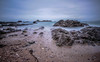 We're only tourists in this life, Only tourists but the view is nice (NikNak Allen) Tags: plymouth devon heybrookbay bay coast beach sand pebbles stone stones rock rocks jagged rugged water sea ocean smooth horizon sky low morning early pov longexposure exposure seascape seaweed