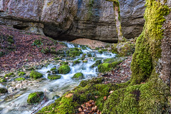 Source Bruyant mountain stream-2244 (George Vittman) Tags: landscape stream river water moss green mountain nature naturephotography jav61photography jav61 photography nikonpassion fantasticnature