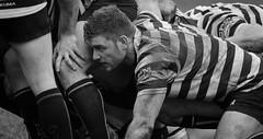 DSC_3133.jpg (davidhowlett) Tags: chinnor thame rugby rugbyunion redruth