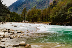 Flow (abhishek.verma55) Tags: lachungchu incredibleindia lachungriver lachung india sikkim ©abhishekverma travelphotography travelphotos travel landscape canon550d river northsikkim naturephotography nature greenery greens landscapelovers landscapelover landscapephotography water rivulet tamron2470 canon trees tree chungthang valley beautiful rocky rockyshore himalaya himalayas mountain mountains mountainside mountainrange travelphoto waterfront flow waterflow natureisbeautiful naturelove natureatitsbest naturelovers hills hillside colourful colour colors colorful winter riverbank wanderlust indiatravel indiaexplore outdoor yellow orange view scenery scenic scene beautifulnature beautyinnature beauty