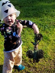 Even better than candy! (quinn.anya) Tags: paul toddler bucket hat pinecone stick