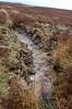 NIDDERDALE, NORTH YORKSHIRE MOORS (meddie / aka Gramps) Tags: northyorkshire moors bleak heather water gloom lonely nidderdale