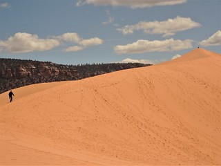 Coral Pink Sand Dunes (Utah)