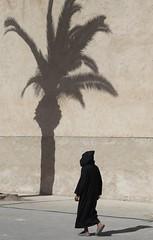 Under the Shadow (Alex L'aventurier,) Tags: essaouira maroc morocco shadow ombre street rue urban urbain city ville palm tree arbre palmier mur wall walking walker marcher movement mouvement man homme candid djellaba black noir