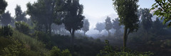 Tom Clancy's Ghost Recon - Wildlands (Matze H.) Tags: tom clancys ghost recon wildlands forrest bloom fog river wood tree panorama
